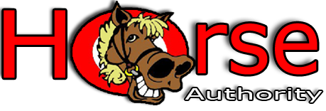 Horse Authority Blanket Wash and Repair